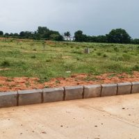 Residential plot in Bhimavaram  Land for sale in Mentevari Thota