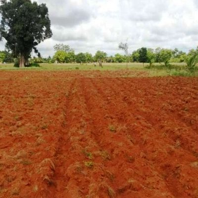 Residential Plots in Gudivada very near to bypass Road 3cent's open plot for sale.